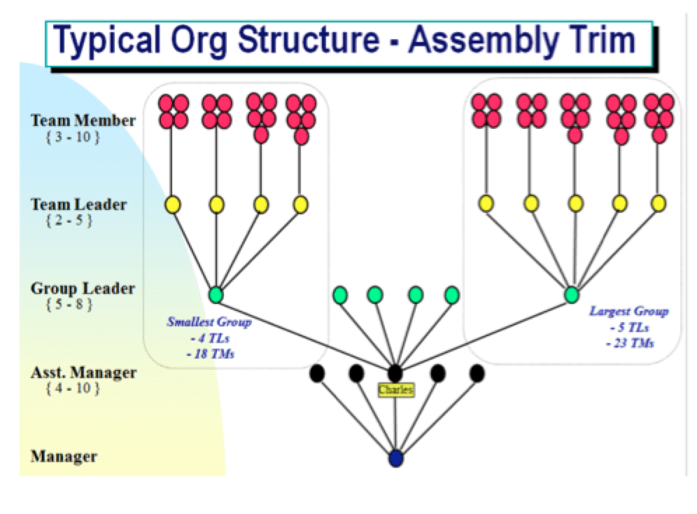 typical structure of lean organization