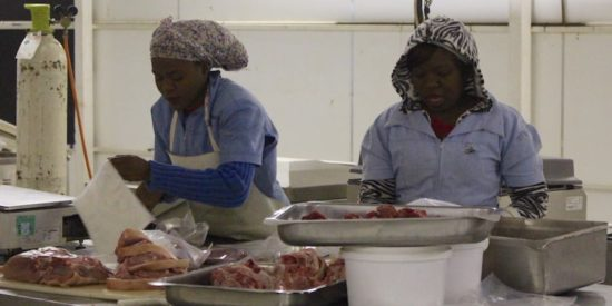 lean butchers continuous improvement Botswana