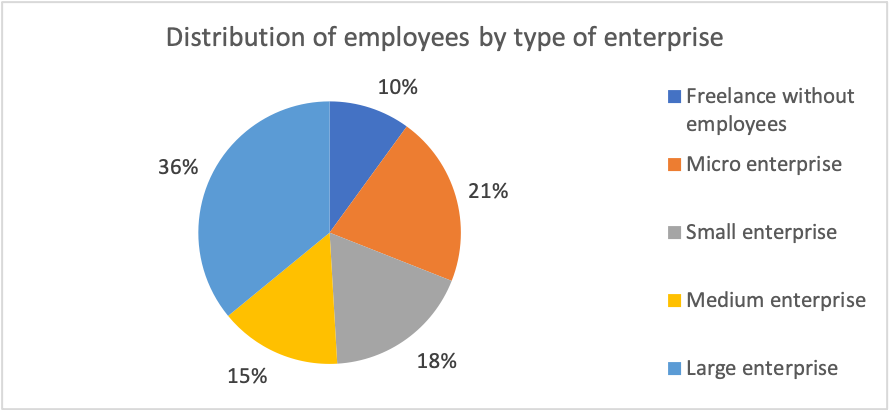 Distribution of employees by type of enterprise